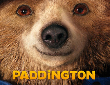/licensing/paddington/